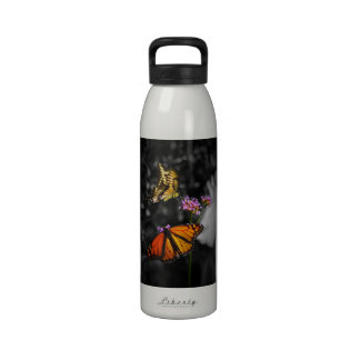 Yellow and Orange Monarch Butterflies on Flowers Drinking Bottles