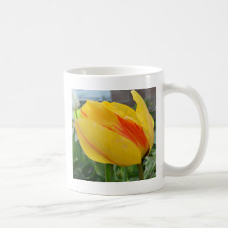 Yellow and Orange Tulip Coffee Mug