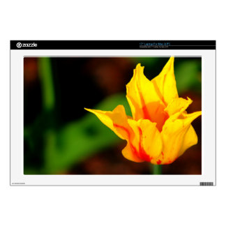 Yellow and Orange Tulip Decals For Laptops