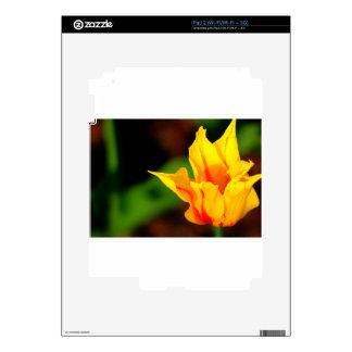 Yellow and Orange Tulip iPad 2 Skin
