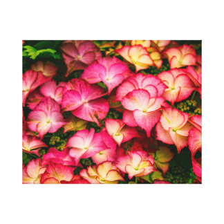 Yellow and Pink Flowers Stretched Canvas