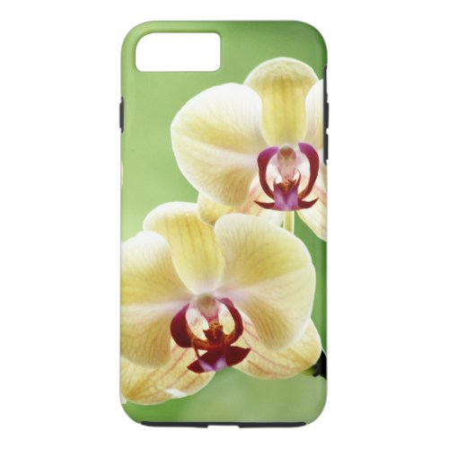 Yellow and Pink Orchid Phone Case