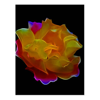 Yellow and pink rose and meaning postcard
