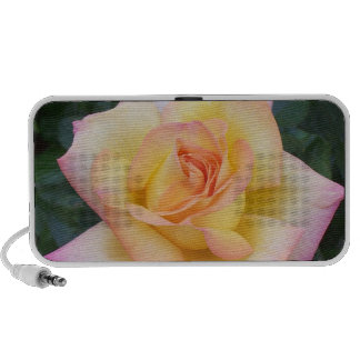 Yellow and Pink Rose Mini Speaker