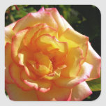Yellow and Pink Rose Sticker