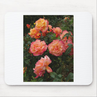 Yellow and pink roses mouse pad