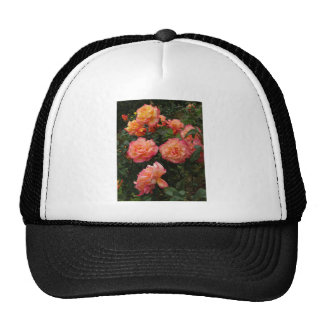 Yellow and pink roses trucker hat