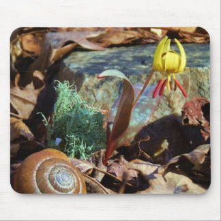 Yellow and Plum Trout Lily and Snail Shell Mouse Pad
