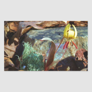 Yellow and Plum Trout Lily and Snail Shell Rectangular Sticker