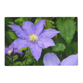 Yellow and Purple Floral Placemat Laminated Placemat