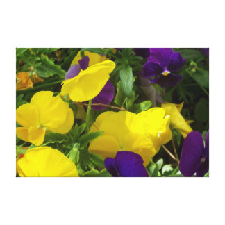 Yellow And  Purple Flower Mix Canvas. Canvas Print