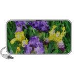 Yellow and Purple Irises iPod Speaker