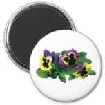 Yellow and Purple Pansy Trio Refrigerator Magnets