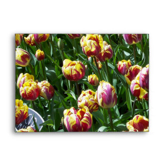 Yellow and Purple Tulips Envelopes