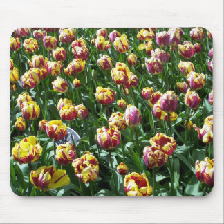 Yellow and Purple Tulips Mouse Pad