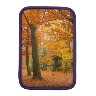 Yellow and Red Autumn Trees and Leaves iPad Mini Sleeves
