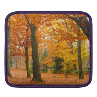 Yellow and Red Autumn Trees and Leaves iPad Sleeve