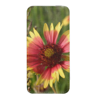 Yellow and Red Gaillardia Flowers iPhone 5 Pouch