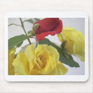 Yellow and Red Roses Mouse Pad