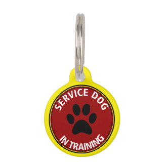 Yellow and Red Service Dog In Training Red Pet Tag