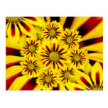 Yellow and Red Striped Gerbera Daisy Sunflower Post Card