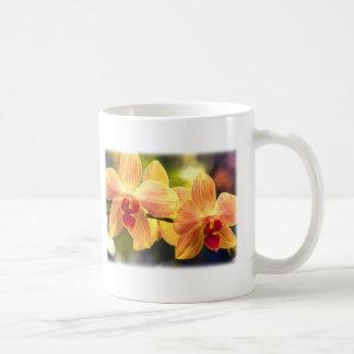 Yellow and Red Striped Phalaenopsis Classic White Coffee Mug