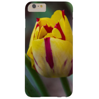Yellow and Red Striped Tulip Phone Case