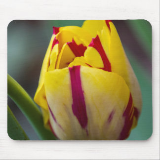 Yellow and Red Tulip Mousepad Mouse Pad