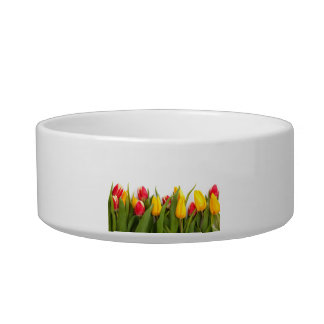 Yellow and Red Tulips Cat Water Bowl