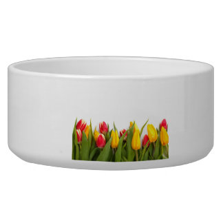 Yellow and Red Tulips Dog Food Bowl