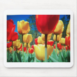 yellow and red tulips mouse pads