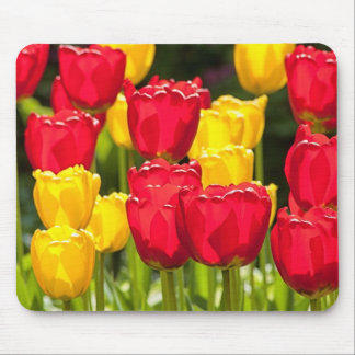 Yellow and Red Tulips Mouse Pad