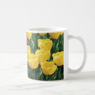 Yellow and red tulips mug