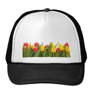 Yellow and Red Tulips Trucker Hat