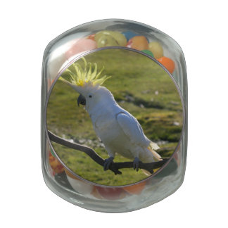 Yellow and White Cockatoo Parrot Glass Candy Jar