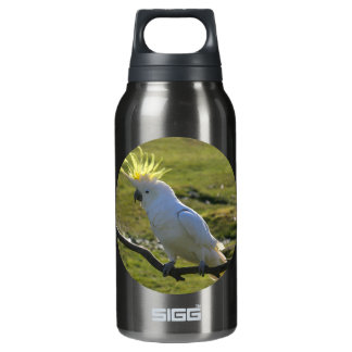 Yellow and White Cockatoo Parrot Insulated Water Bottle