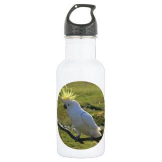 Yellow and White Cockatoo Parrot Stainless Steel Water Bottle