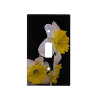Yellow and White Daffodils on Black 2 Light Switch Cover