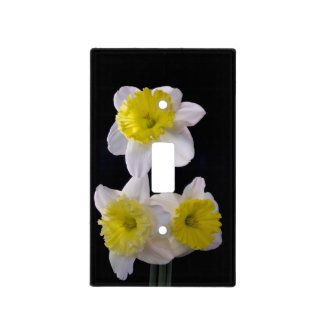 Yellow and White Daffodils on Black Light Switch Covers