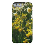Yellow and White Daffodils Spring Flowers Barely There iPhone 6 Case