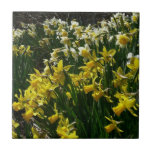 Yellow and White Daffodils Spring Flowers Ceramic Tile