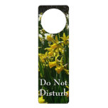 Yellow and White Daffodils Spring Flowers Door Hanger