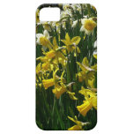 Yellow and White Daffodils Spring Flowers iPhone SE/5/5s Case
