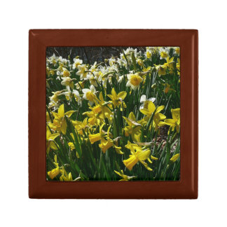 Yellow and White Daffodils Spring Flowers Jewelry Box