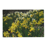 Yellow and White Daffodils Spring Flowers Placemat