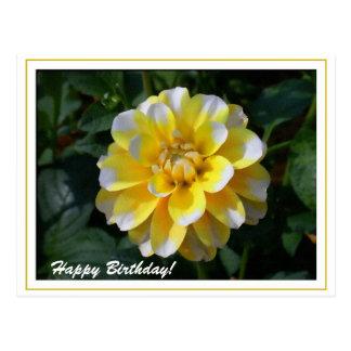 Yellow and white dahlia birthday greeting postcard