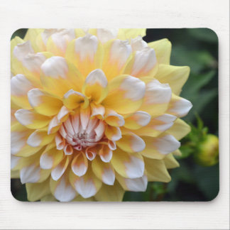 Yellow and White Dahlia Mouse Pad