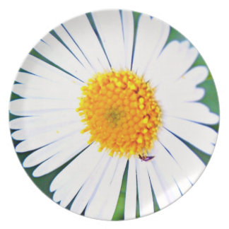 Yellow and white flower with bee insect melamine plate