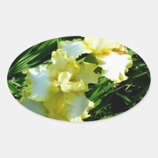 Yellow and White Iris Flower Oval Sticker