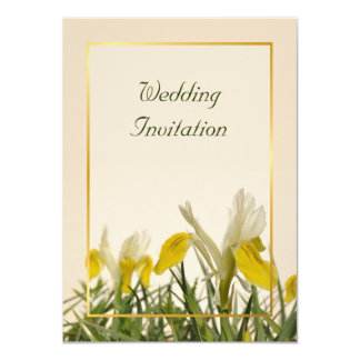 Yellow and white irises card